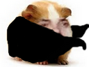 :Hamsterman: